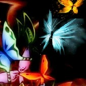 3D colorful butterfly 3