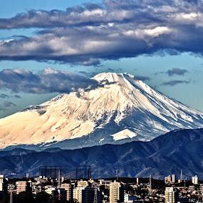 Fuji in Winter by Lenny Sharp - Landscapes Mountains & Hills ( japan, snow, fuji, yokohama )
