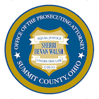 Summit County OH Child Support icon