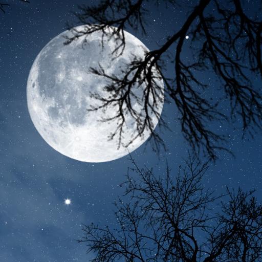 放鬆之夜 - 大自然的聲音 生活 App LOGO-APP試玩