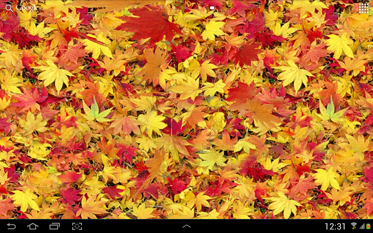 Autumn Leaves 3d Lwp Android Apps On Google Play
