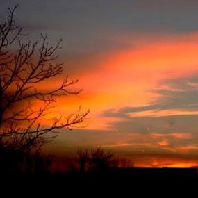 Dawn in small Village by Nat Bolfan-Stosic - Landscapes Sunsets & Sunrises ( love, dawn, village, bright, sunrise )