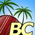 Beach Cricket Pro icon