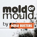 Black Mold Live Wallpaper icon
