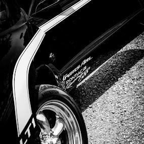 Firebird by Manuela Kägi - Transportation Automobiles ( car, sort, muscle, us, firebird, musclecars, pontiac )