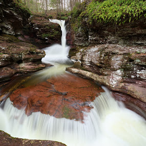 Adams Falls by Tim Devine - Landscapes Waterscapes ( adams falls, waterfall, pennsylvania, ricketts glen state park )