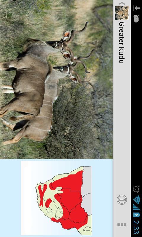 Mammals of Southern Africa- screenshot