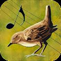 Birds Voices icon