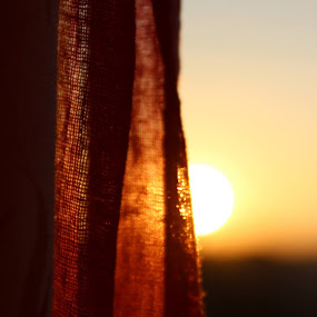 Sunrise by Sowmya Beena - Landscapes Sunsets & Sunrises (  )