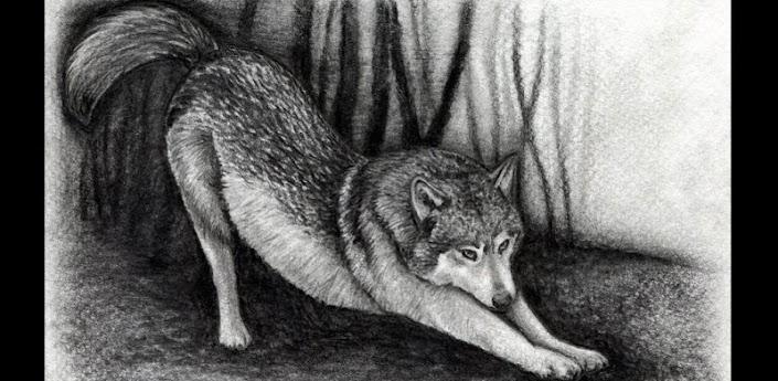 Как рисовать Волк Видео
