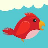 Flying Bird Pilot