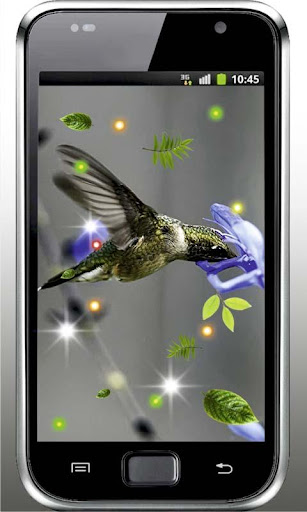 【免費個人化App】Colibri Top 100 live wallpaper-APP點子