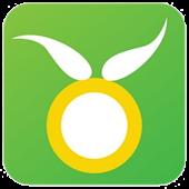 OliveMadeena