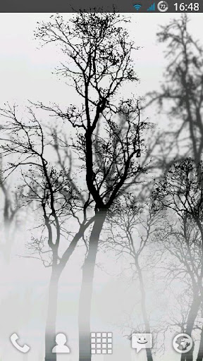 Trees In Fog Live Wallpaper
