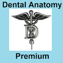Dental Anatomy Premium icon