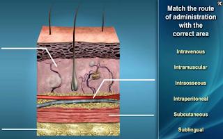 Screenshot of Medrills: Administer Medicine