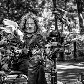 Larry and his Pigeons by Kevin Case - Black & White Portraits & People ( canon, pigeon, kevin case, park, nycphotography, newyorkcity, kevdia photography, canon photography, larry pigeons, kevdia,  )