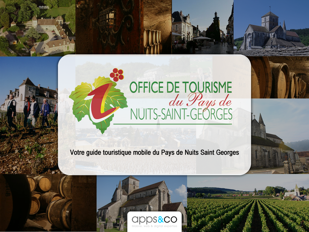 PAYS DE NUITS-SAINT-GEORGES HD- screenshot