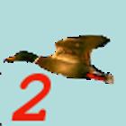 Birdhunt2 icon