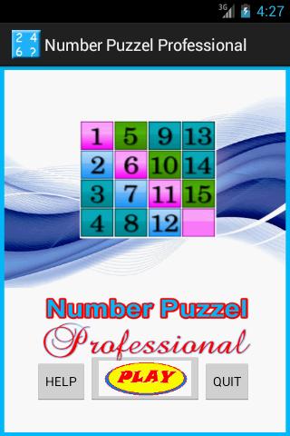 Number Puzzle Professional