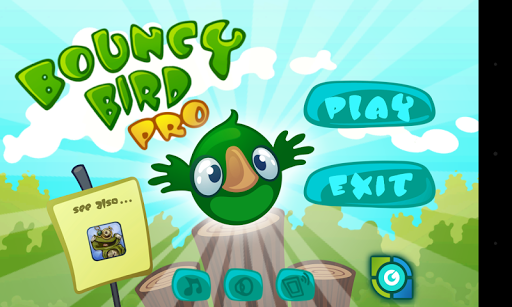 Bouncy Bird Pro