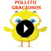The Pio chick funny