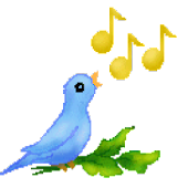 Bird Sounds for Kids