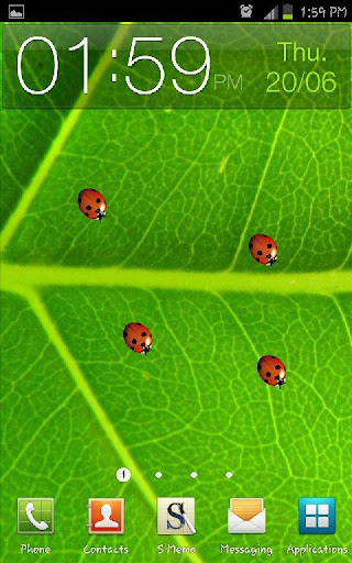 Ladybugs Live Wallpaper