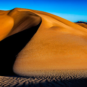 Dune Shadow by Johan Jooste Snr - Landscapes Deserts ( sand, namib desert, desert, textures, dune, shadows, namibia )