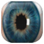 Widget Eye Camera v1.0