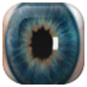 Widget Eye Hidden Camera