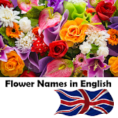 Learn Flower Names in English