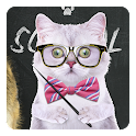 Pets 3D Live Wallpaper icon