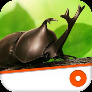 教育のカブトムシ ~森の王座~ LOGO-記事Game