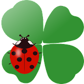 Coccinella Live Wallpaper