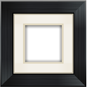 Aviary Frames: Original icon