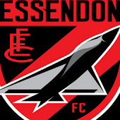 Essendon Bombers Fan