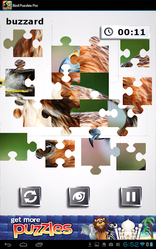 玩紙牌App|鳥之謎 - 神奇鳥免費|APP試玩