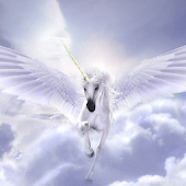 Unicorn Pegasus Live Wallpaper