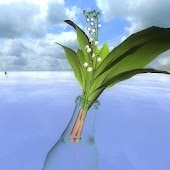 Lily of the Valley 3D Postcard