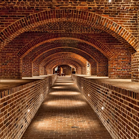 Under the Basilica by Deborah Felmey - Buildings & Architecture Other Interior ( basiilica, brick, arches, catacombs, baltimore, architecture,  )