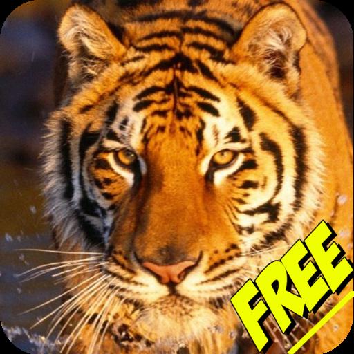 兒童動物的聲音 教育 App LOGO-APP試玩