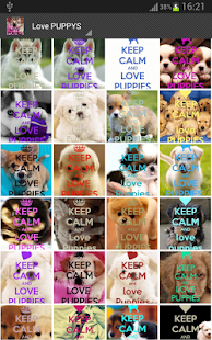 Keep Calm 4 PUPPIES