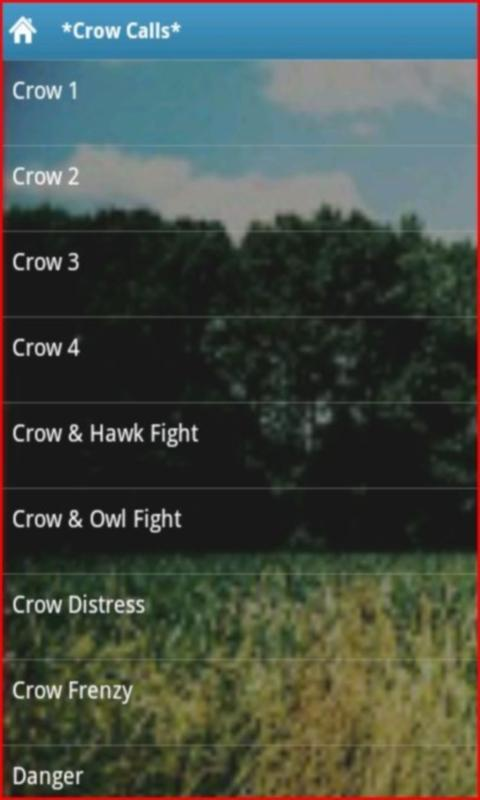 Crow Calls - screenshot