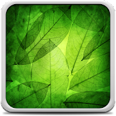 Green Leaves Live Wallpaper