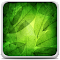 Green Leaves Live Wallpaper 1.0 Apk