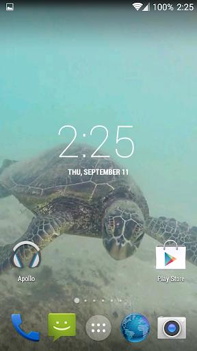 【免費個人化App】Sea Turtle HD. Wallpaper-APP點子