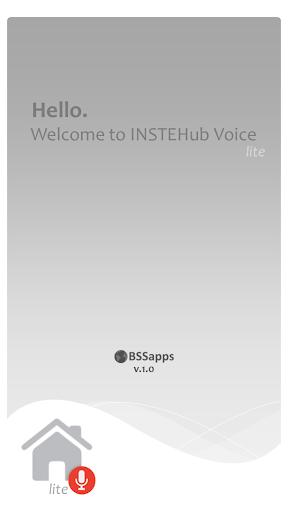 INSTEHub Voice LITE