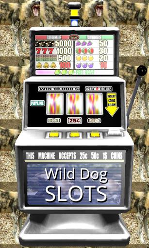 3D Wild Dog Slots - Free