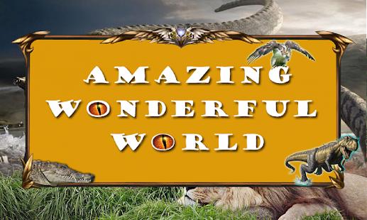 Amazing Wonderful World